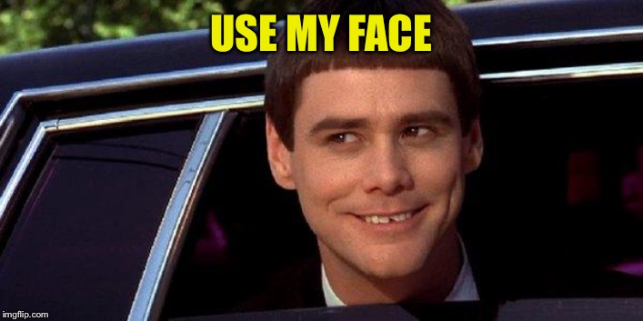 dumb and dumber | USE MY FACE | image tagged in dumb and dumber | made w/ Imgflip meme maker