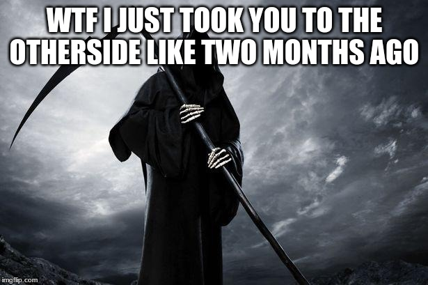 Death | WTF I JUST TOOK YOU TO THE OTHERSIDE LIKE TWO MONTHS AGO | image tagged in death | made w/ Imgflip meme maker