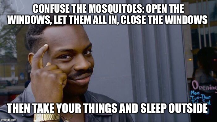 Roll Safe Think About It Meme | CONFUSE THE MOSQUITOES: OPEN THE WINDOWS, LET THEM ALL IN, CLOSE THE WINDOWS THEN TAKE YOUR THINGS AND SLEEP OUTSIDE | image tagged in memes,roll safe think about it | made w/ Imgflip meme maker