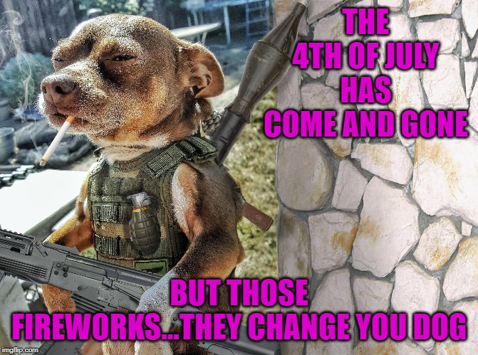 My friends dog was scared shitless... | THE 4TH OF JULY HAS COME AND GONE BUT THOSE FIREWORKS...THEY CHANGE YOU DOG | image tagged in dog warrior,memes,4th of july,funny,ptsd,changes | made w/ Imgflip meme maker