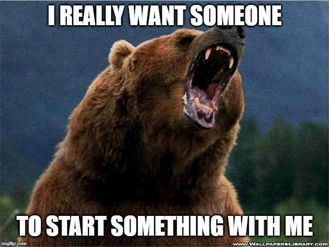 I REALLY WANT SOMEONE TO START SOMETHING WITH ME | image tagged in angry confession bear | made w/ Imgflip meme maker