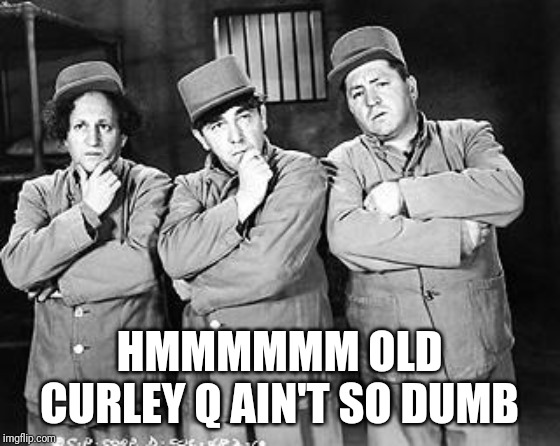 Three Stooges Thinking | HMMMMMM OLD CURLEY Q AIN'T SO DUMB | image tagged in three stooges thinking | made w/ Imgflip meme maker