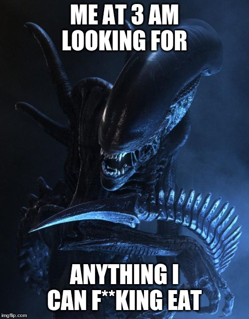 ME AT 3 AM LOOKING FOR ANYTHING I CAN F**KING EAT | image tagged in alien xenomorph | made w/ Imgflip meme maker