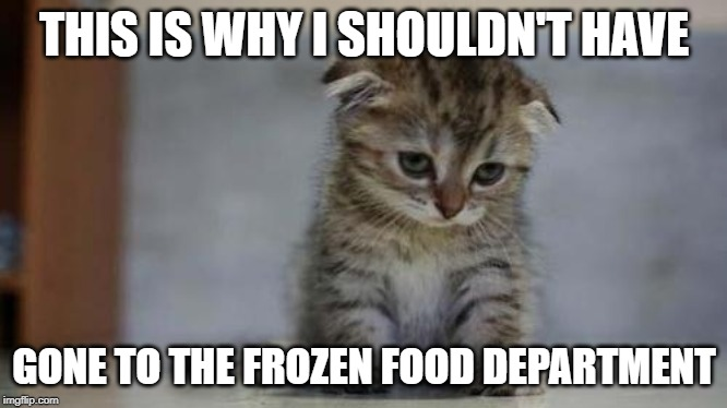 Sad kitten | THIS IS WHY I SHOULDN'T HAVE GONE TO THE FROZEN FOOD DEPARTMENT | image tagged in sad kitten | made w/ Imgflip meme maker