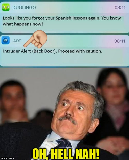 Okay Then... | OH, HELL NAH! | image tagged in memes,duolingo,duolingo bird | made w/ Imgflip meme maker