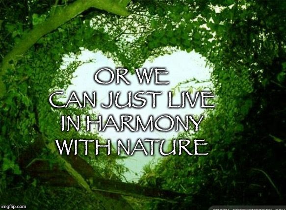OR WE CAN JUST LIVE IN HARMONY WITH NATURE | image tagged in nature heart | made w/ Imgflip meme maker