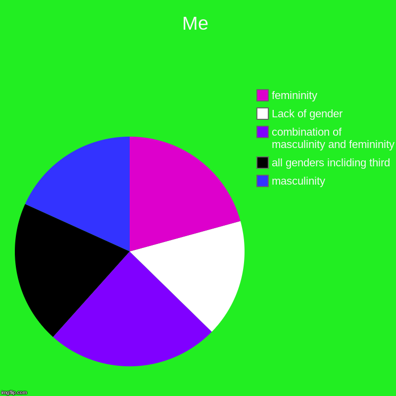 Me | Me | masculinity, all genders incliding third , combination of masculinity and femininity, Lack of gender, femininity | image tagged in charts,pie charts,gender fluid,me | made w/ Imgflip chart maker