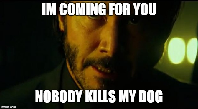 John Wick | IM COMING FOR YOU NOBODY KILLS MY DOG | image tagged in john wick | made w/ Imgflip meme maker