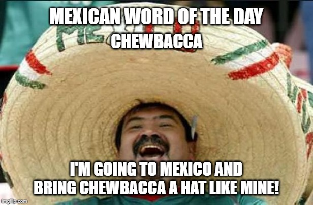 Mexican word of the day | MEXICAN WORD OF THE DAY I'M GOING TO MEXICO AND BRING CHEWBACCA A HAT LIKE MINE! CHEWBACCA | image tagged in mexican word of the day,mexico,big hat,word of the day | made w/ Imgflip meme maker