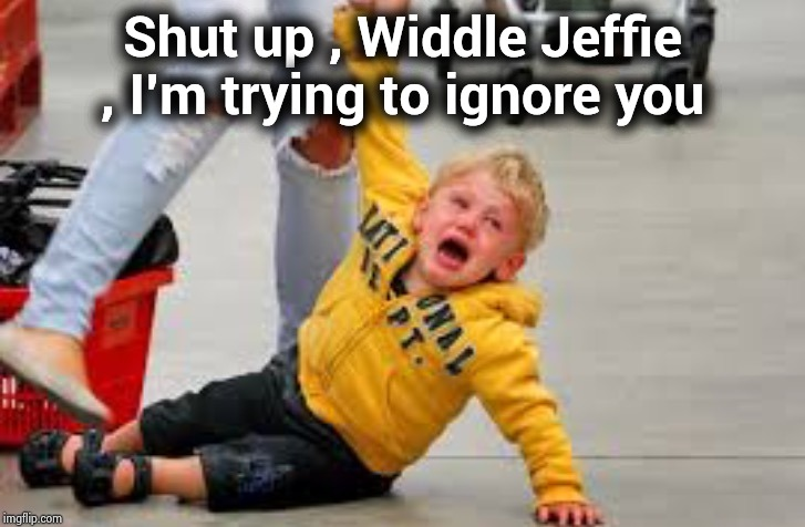 Do you ever stop crying ? |  Shut up , Widdle Jeffie , I'm trying to ignore you | image tagged in crybaby,never go full retard,whiners,humor,loser | made w/ Imgflip meme maker