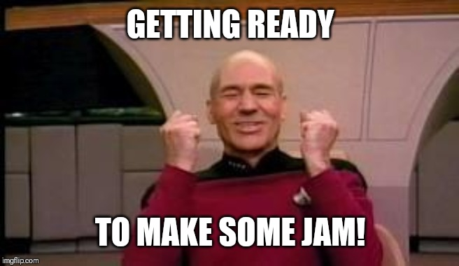 Happy Picard | GETTING READY TO MAKE SOME JAM! | image tagged in happy picard | made w/ Imgflip meme maker