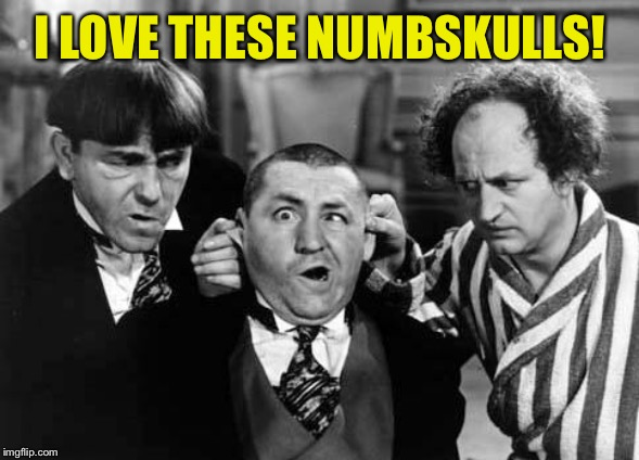 Three Stooges | I LOVE THESE NUMBSKULLS! | image tagged in three stooges | made w/ Imgflip meme maker