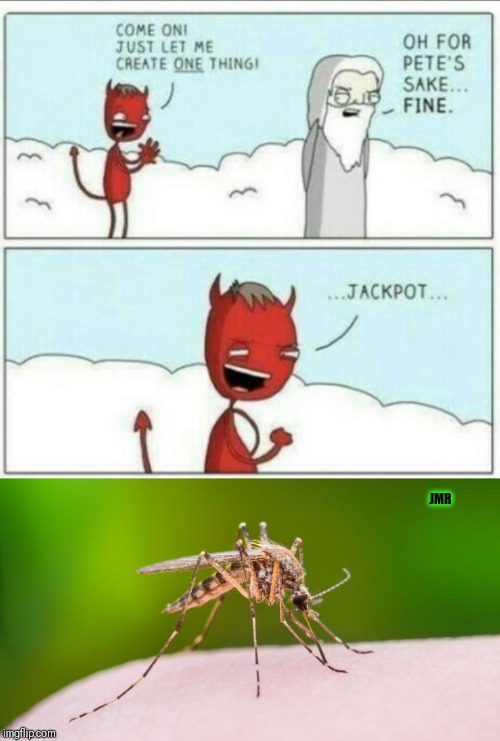 The struggle is real | JMR | image tagged in let me create,devil,god,mosquito | made w/ Imgflip meme maker