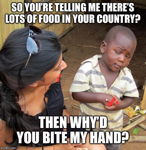 3rd World Sceptical Child | SO YOU'RE TELLING ME THERE'S LOTS OF FOOD IN YOUR COUNTRY? THEN WHY'D YOU BITE MY HAND? | image tagged in 3rd world sceptical child | made w/ Imgflip meme maker