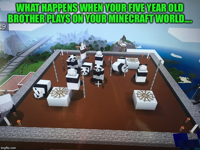 Pandas on the Roof | WHAT HAPPENS WHEN YOUR FIVE YEAR OLD BROTHER PLAYS ON YOUR MINECRAFT WORLD.... | image tagged in panda,roof,building,minecraft | made w/ Imgflip meme maker