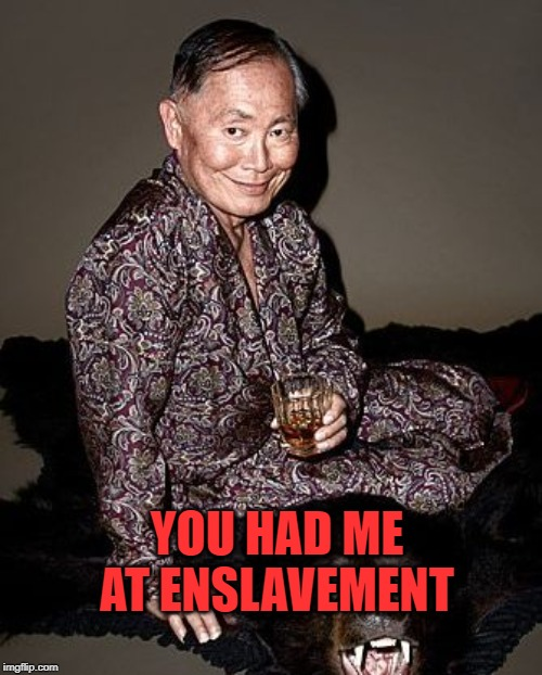 George Takei | YOU HAD ME AT ENSLAVEMENT | image tagged in george takei | made w/ Imgflip meme maker