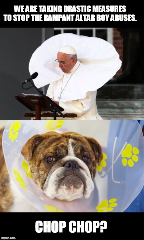 Now, that's taking the initiative! |  WE ARE TAKING DRASTIC MEASURES TO STOP THE RAMPANT ALTAR BOY ABUSES. CHOP CHOP? | image tagged in funny,vatican,castration | made w/ Imgflip meme maker