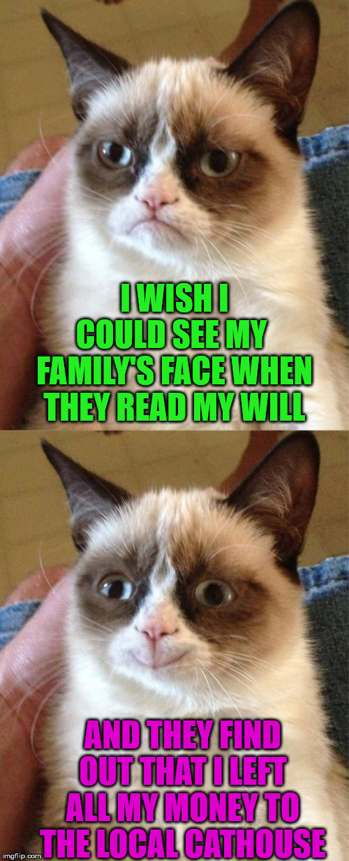 Grumpy Cats Will | I WISH I COULD SEE MY  FAMILY'S FACE WHEN THEY READ MY WILL AND THEY FIND OUT THAT I LEFT ALL MY MONEY TO THE LOCAL CATHOUSE | image tagged in memes,grumpy cat,grumpy cat happy,will,money | made w/ Imgflip meme maker