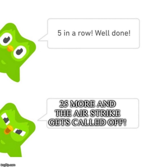 Duolingo 5 in a row | 25 MORE AND THE AIR STRIKE GETS CALLED OFF! | image tagged in duolingo 5 in a row | made w/ Imgflip meme maker