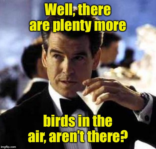 James Bond | Well, there are plenty more birds in the air, aren't there? | image tagged in james bond | made w/ Imgflip meme maker