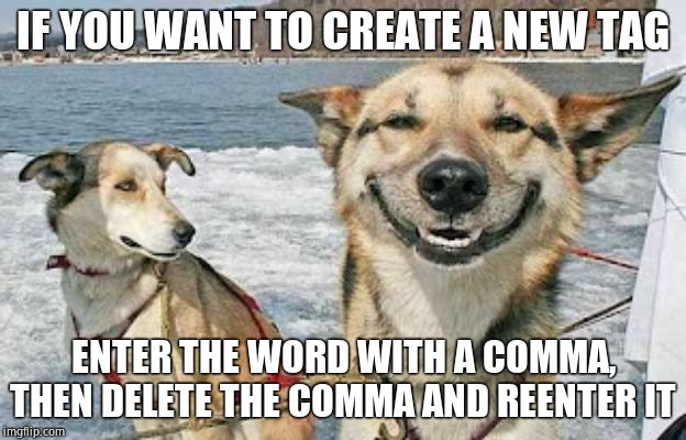 Original Stoner Dog | IF YOU WANT TO CREATE A NEW TAG ENTER THE WORD WITH A COMMA, THEN DELETE THE COMMA AND REENTER IT | image tagged in memes,original stoner dog,how_to_imgflip | made w/ Imgflip meme maker
