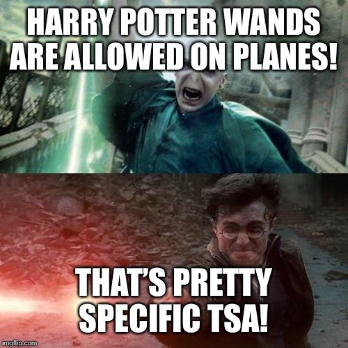 Harry Potter meme | HARRY POTTER WANDS ARE ALLOWED ON PLANES! THAT'S PRETTY SPECIFIC TSA! | image tagged in harry potter meme | made w/ Imgflip meme maker