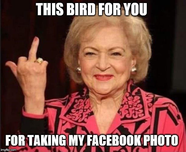 this bird for you | THIS BIRD FOR YOU FOR TAKING MY FACEBOOK PHOTO | image tagged in finger,betty white,middle finger grandma,middle finger,meme,memes | made w/ Imgflip meme maker
