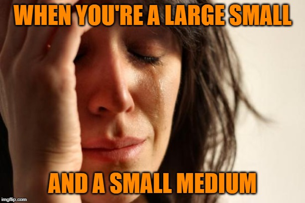 Smedium Problems | WHEN YOU'RE A LARGE SMALL AND A SMALL MEDIUM | image tagged in first world problems,funny memes,clothes,women,it could be worse,clothing | made w/ Imgflip meme maker