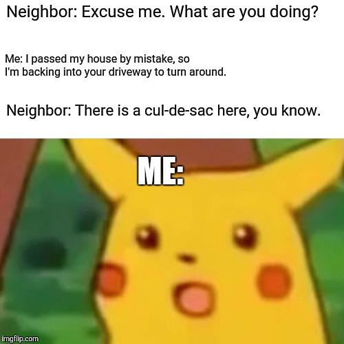 Thankfully, the cops weren't called, therefore, no charges were pressed. | Neighbor: Excuse me. What are you doing? Me: I passed my house by mistake, so I'm backing into your driveway to turn around. Neighbor: There | image tagged in memes,surprised pikachu,driving,awkward,fml,not a true story | made w/ Imgflip meme maker
