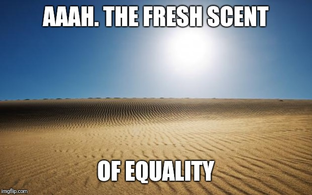 AAAH. THE FRESH SCENT OF EQUALITY | image tagged in desert | made w/ Imgflip meme maker
