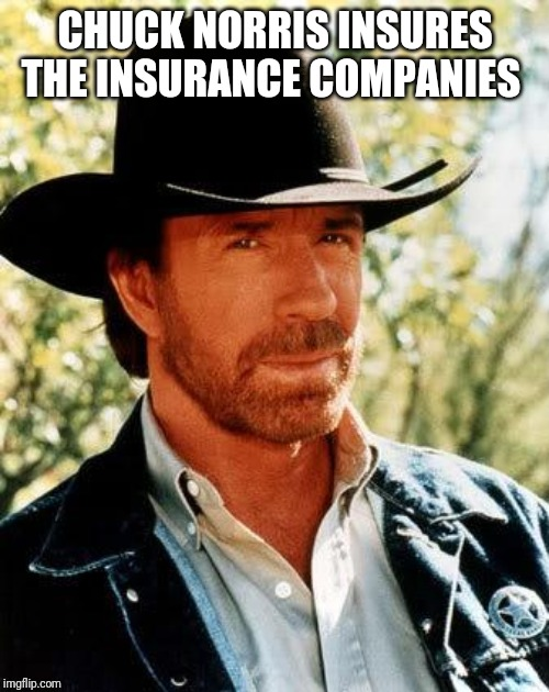 Chuck Norris Meme | CHUCK NORRIS INSURES THE INSURANCE COMPANIES | image tagged in memes,chuck norris | made w/ Imgflip meme maker