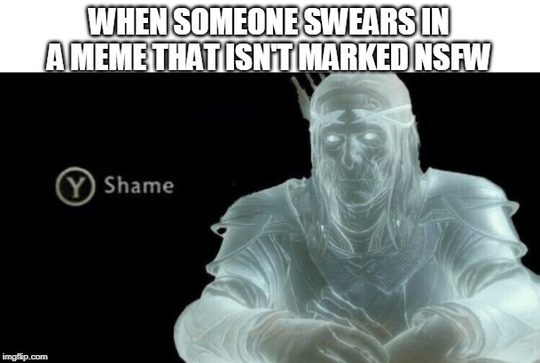 Shame on you! | WHEN SOMEONE SWEARS IN A MEME THAT ISN'T MARKED NSFW | image tagged in y to shame | made w/ Imgflip meme maker