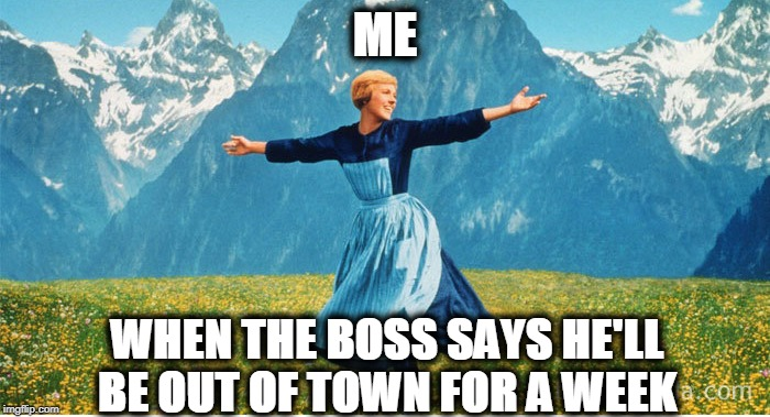Who Doesn't Feel Like This ?! |  ME; WHEN THE BOSS SAYS HE'LL BE OUT OF TOWN FOR A WEEK | image tagged in boss,gone,for,week,yippee | made w/ Imgflip meme maker
