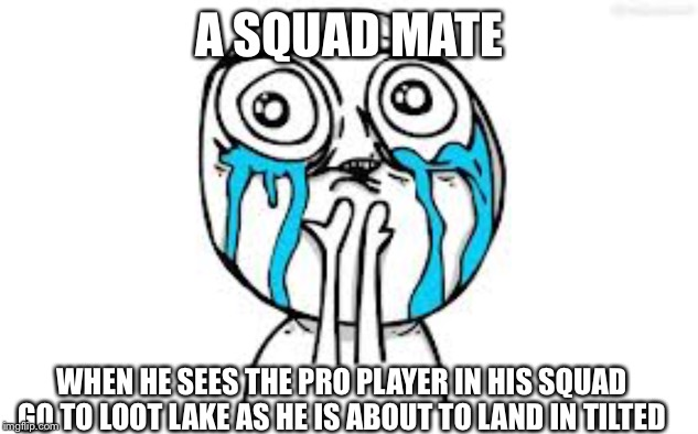 Crying Because Of Cute | A SQUAD MATE WHEN HE SEES THE PRO PLAYER IN HIS SQUAD GO TO LOOT LAKE AS HE IS ABOUT TO LAND IN TILTED | image tagged in memes,crying because of cute | made w/ Imgflip meme maker