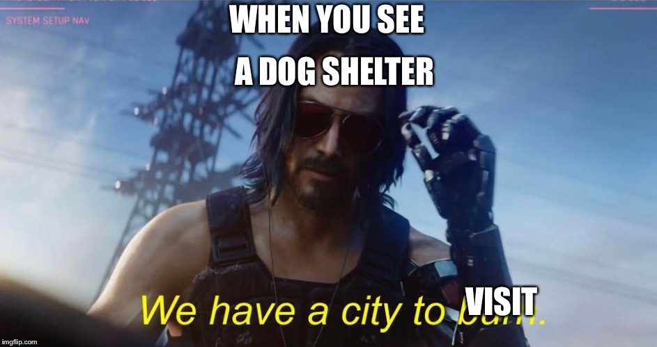 We have a city to burn | WHEN YOU SEE A DOG SHELTER VISIT | image tagged in we have a city to burn | made w/ Imgflip meme maker