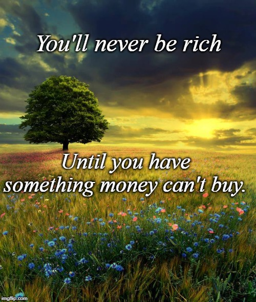 Money Can't Buy | You'll never be rich Until you have something money can't buy. | image tagged in wisdom | made w/ Imgflip meme maker