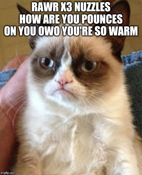 Grumpy Cat Meme | RAWR X3 NUZZLES HOW ARE YOU POUNCES ON YOU OWO YOU'RE SO WARM | image tagged in memes,grumpy cat | made w/ Imgflip meme maker