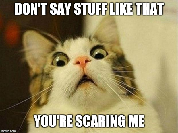 Scared Cat Meme | DON'T SAY STUFF LIKE THAT YOU'RE SCARING ME | image tagged in memes,scared cat | made w/ Imgflip meme maker