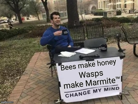Bees make honey | Bees make honey Wasps make Marmite™ | image tagged in memes,change my mind,funny,bees,wasp | made w/ Imgflip meme maker