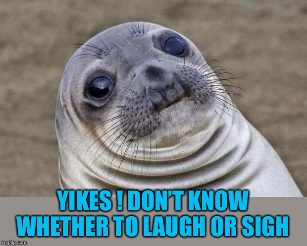 Awkward Moment Sealion Meme | YIKES ! DON'T KNOW WHETHER TO LAUGH OR SIGH | image tagged in memes,awkward moment sealion | made w/ Imgflip meme maker