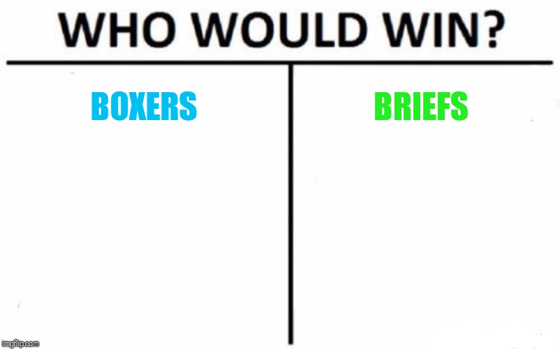 Who Would Win? | BOXERS BRIEFS | image tagged in memes,who would win | made w/ Imgflip meme maker