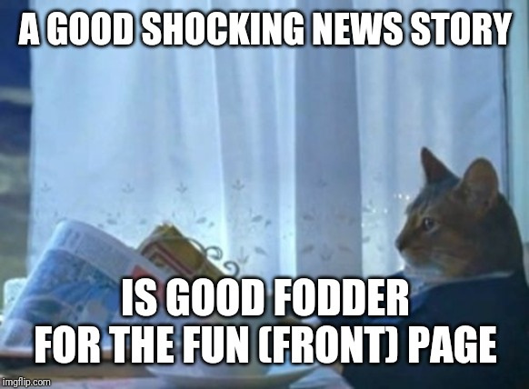 I Should Buy A Boat Cat Meme | A GOOD SHOCKING NEWS STORY IS GOOD FODDER FOR THE FUN (FRONT) PAGE | image tagged in memes,i should buy a boat cat | made w/ Imgflip meme maker