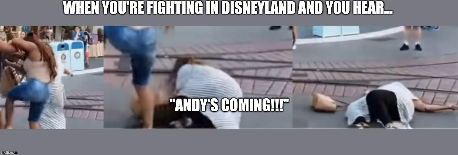 "Toontown Fight | WHEN YOU'RE FIGHTING IN DISNEYLAND AND YOU HEAR... ""ANDY'S COMING!!!"" 