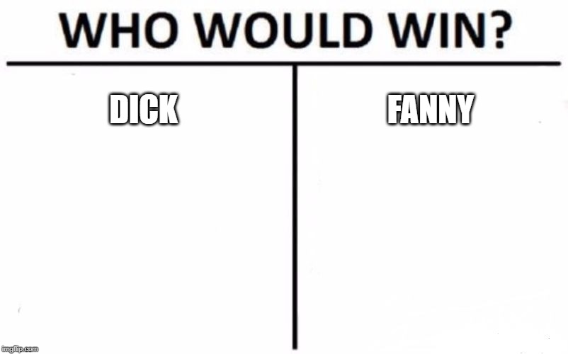 Who Would Win? | DICK FANNY | image tagged in memes,who would win | made w/ Imgflip meme maker