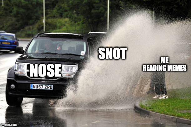 NOSE SNOT ME READING MEMES | image tagged in splashed | made w/ Imgflip meme maker