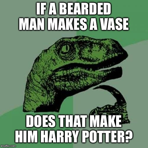 Philosoraptor Meme | IF A BEARDED MAN MAKES A VASE DOES THAT MAKE HIM HARRY POTTER? | image tagged in memes,philosoraptor,harry potter | made w/ Imgflip meme maker