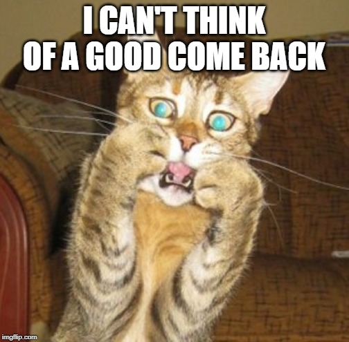 Scared cat | I CAN'T THINK OF A GOOD COME BACK | image tagged in scared cat | made w/ Imgflip meme maker