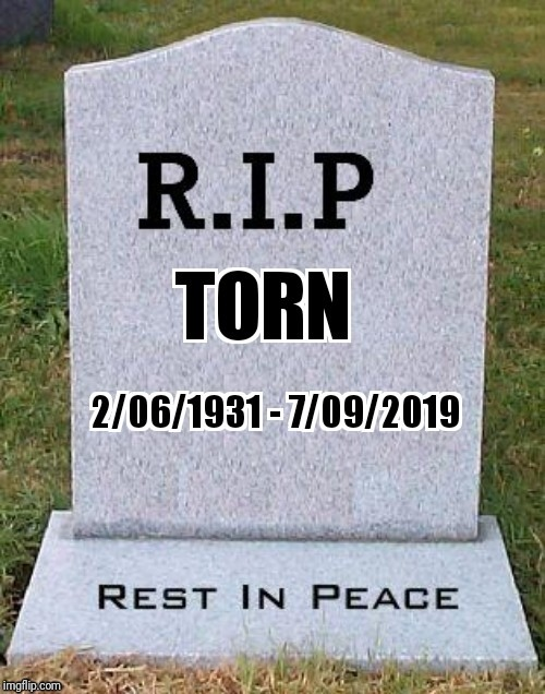 R.I.P. Torn | image tagged in rip | made w/ Imgflip meme maker