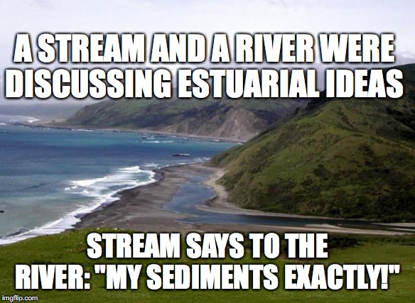 "Estuary Joke | A STREAM AND A RIVER WERE DISCUSSING ESTUARIAL IDEAS STREAM SAYS TO THE RIVER: ""MY SEDIMENTS EXACTLY!"" 