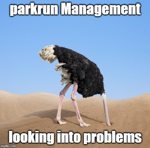 Ostrich | parkrun Management looking into problems | image tagged in ostrich | made w/ Imgflip meme maker